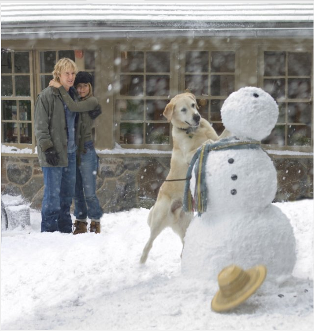 marley-and-me-snow-movie-still