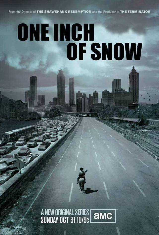 one-inch-of-snow-atlanta-looks-like-walking-dead-show-poster-snowmageddon-2014-upcycledtreasures