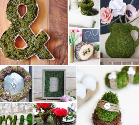 10 ways to use moss in spring decor mountainmodernlife.com