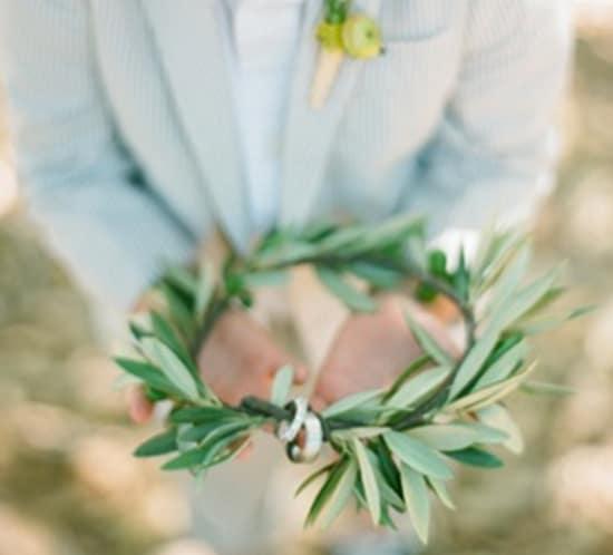 ring bearer olive branch
