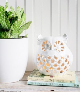 diy-owl-nightlight-from-ceramic-decor-mountainmodernlife-com-550
