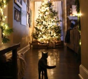cozy cabin inspired christmas home decor mountainmodernlife.com