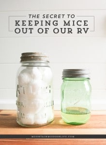 secret-to-keeping-mice-out-of-rv-mountainmodernlife-com