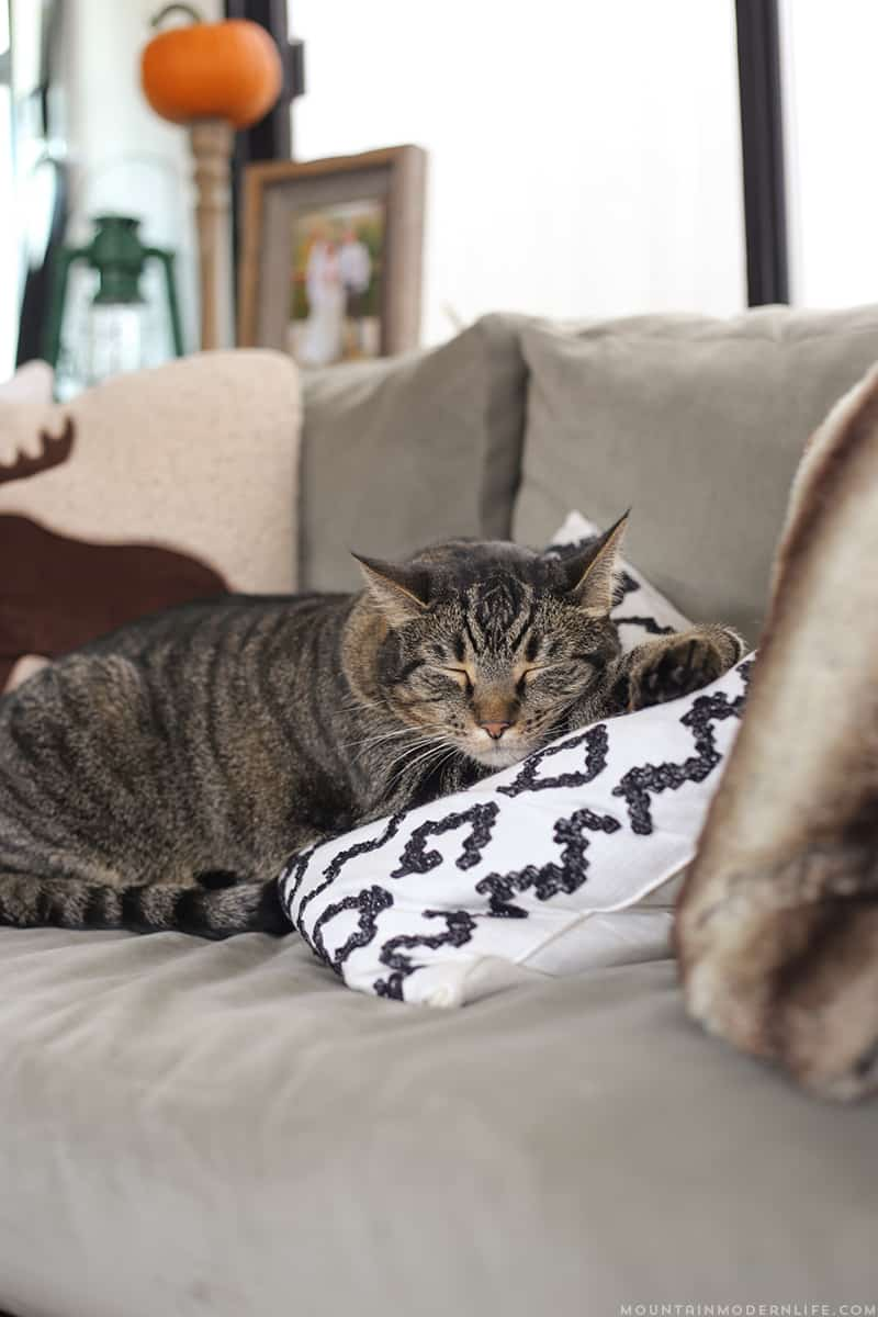 DIY Placemat Pillow on Sofa in RV | MountainModernLife.com
