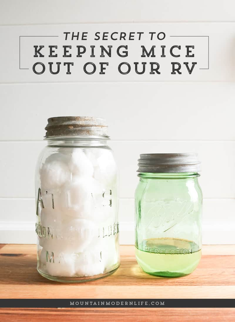 How to Keep Mice out of your RV - 10 Favorite Posts of 2016 | MountainModernLife.com