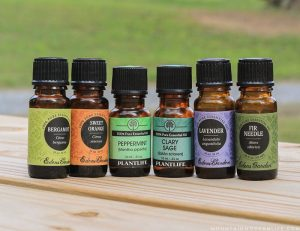 Looking to incorporate natural remedies into your lifestyle? Here are 6 of my favorite single essential oils that I frequently use. | MountainModernLife.com