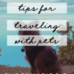 Tips for Traveling with Pets + Printable RV Pet Checklist! MountainModernLife.com
