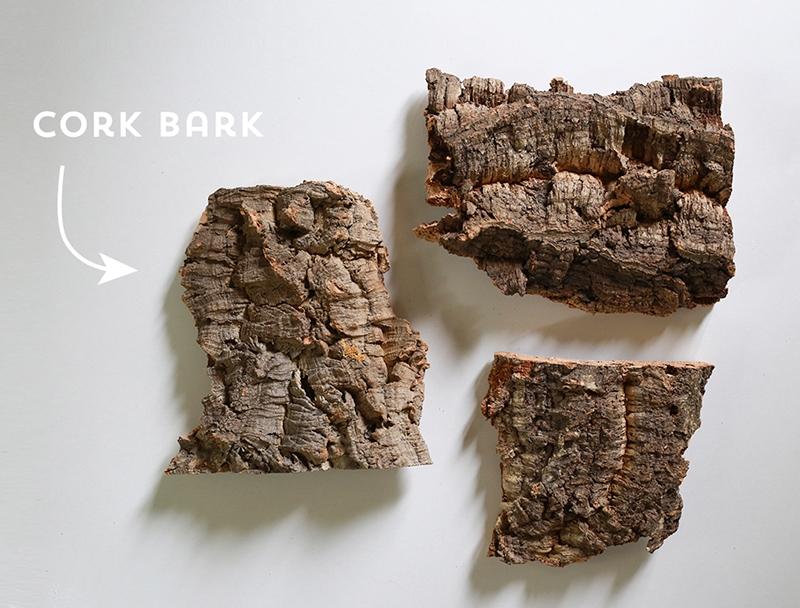 cork bark flats used for hanging plants
