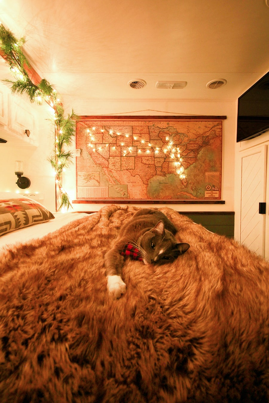 Christmas cat in RV